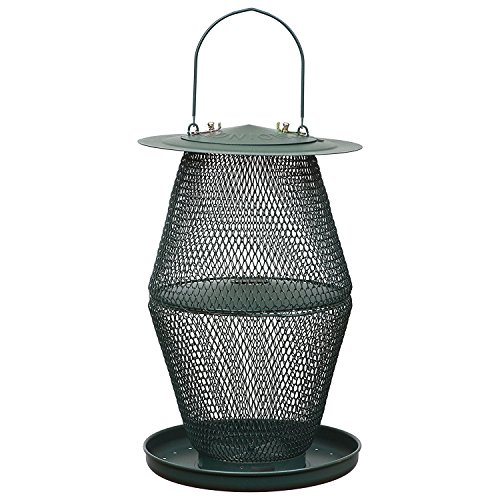 - No/No Forest Green Lantern Bird Feeder  GL00323