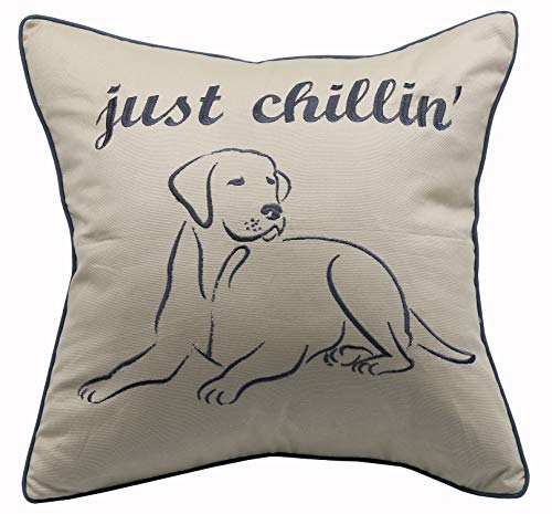 YugTex Pillowcases Embroidered Pet Lover Gift,Just Chillin' Pillowcase,Gifts for him,Gift for her,I Just Wanna chill with My Dog or cat Throw Pillow (18