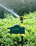 PierTech® Motion Activated Sprinkler