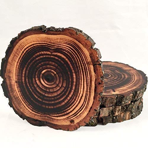 Shou Sugi Ban Style Burned Natural Tree Wood Coasters with Bark (4 or 6 Pack) -