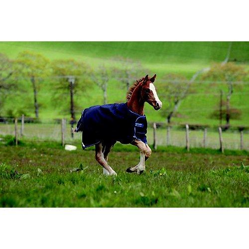 - AMIGO Foal Turnout Blanket 48 Excalibur