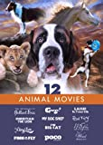 Animal Movies - Family Film 12 Pack: Lassie: The Painted Hills - A Dog's Take - The Lion Who Thought He Was People - George! - Red Fury + 7 more!