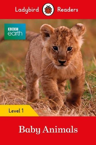 Download Ladybird Readers BBC Earth multi-copy Pack pdf