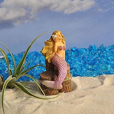 Woodland Knoll Miniature Fairy Garden Listening to The Ocean Mermaid : Garden & Outdoor