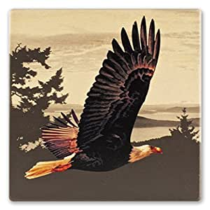 Bird - Bald Eagle In Flight Wooden Coaster