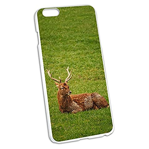 Male Deer On Grass - Hunting Snap On Hard Protective Case for Apple iPhone 6 6s Plus (FITS PLUS MODEL (Iphone 6 Case Otterbox Hunting)