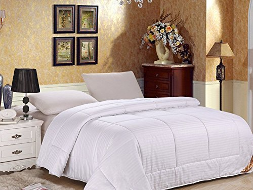 OLizee Comfortable Mulberry Silk Comforter for Summer Silk Duvet Silk Filled Comforter Silk Quil ...