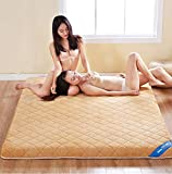 hxxxy Thickened Plush Mattress,Tatami Floor mat Portable Thicken Mattress Hats Queen-King Dorm Student-A 90x190cm(35x75inch)