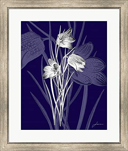 Jewel Stems IV by James Burghardt Framed Art Print Wall Picture, Silver Scoop Frame, 26 x 30 ()