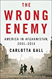 The Wrong Enemy: America in