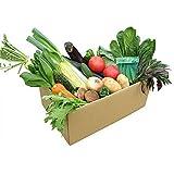 くまもと風土 自家用野菜セット 九州 熊本産 旬の野菜12品_wx