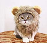 Yu-Xiang Cat Wig Lion Mane Hair Hat with Ear and Tail Funny Halloween Dog Costume for Small Dogs Golden Retriever (M)