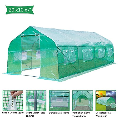 House Greenhouse - VINGLI 20x10x7 Ft Portable Large Greenhouse, Walk-in Door Tunnel Outdoor Reinforced PE Cover Plant Gazebo Canopy, Backyard Gardening Warm Hot House with Galvanised Sturdy Frame,Windows and Shape Roof