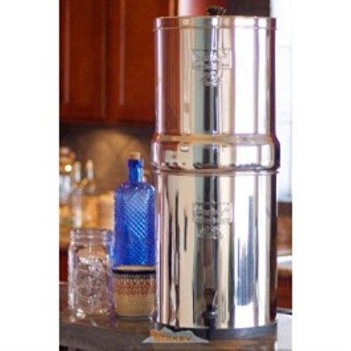 Royal Berkey 3.25 Gal. Stainless Steel Water Filter with 2 Ceramic Filters RB4X2-CF by Royal Berkey