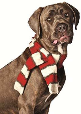 Chilly Dog White/Red Pet Scarf, Large