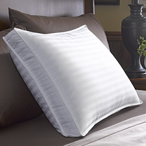 Pacific Coast Feather Restful Nights Down Surround Pillow (Standard, Medium) 85%OFF