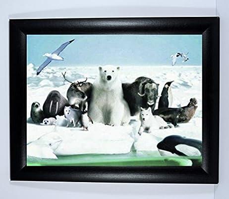 Arctic - Escena de polo norte enmarcada con oso polar blanco y ...