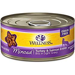 Wellness Natural Grain Free Wet Canned Cat Food, Minced Turkey &Salmon Entrée, 5.5-Ounce Can (Pack of 24)