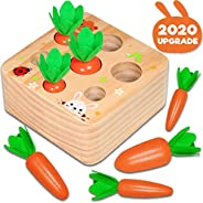 Hamsoo Montessori Toys for Toddlers Age 1-3, Carrot Harvest Shaped & Size Matching Game Fine Motor Skill W