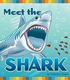 Meet the Shark, Catherine Vadon, 1587285983