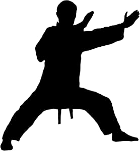Martial Arts Wall Decal Sticker 5 - Decal Stickers and Mural for Kids Boys Girls Room and Bedroom. Karate Sport Wall Art for Home Decor and Decoration - Martial Art Kung Fu Taekwondo Silhouette Mural