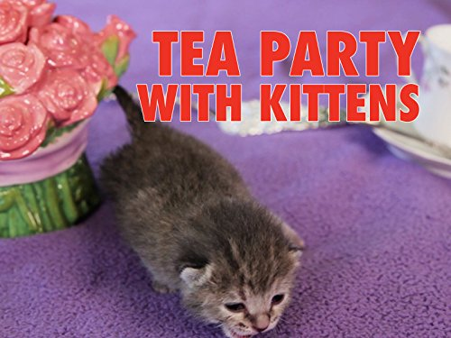 Clip: Tea Party With Kittens ()