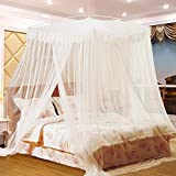 Nattey Princess Lace Canopies Mosquito Netting Canopy For Twin Full Queen King Bed Size (White) (White)