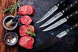 DALSTRONG Steak Knives Set - Shogun Series