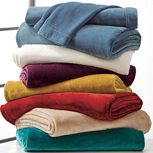 BrylaneHome Studio Microfleece Sheet Set (Peacock,Full)