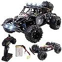 ラジコンカー Remoking RCカー リモコンカー 1/18 4W電動オフロードバギー 2.4Ghz無線操作 LEDライト搭載 リモコンカー 高速車 子どもプレゼント 黒