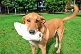Sitka Farms Cow Ears for Dogs XXL Giant JUMBO