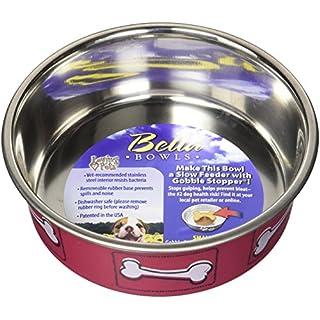 Loving Pets 7519 Coastal Bella Bowl for Dogs, Small, Hawaiian Red