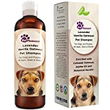 Best Shampoos For Dry Brittles - Vanilla Oatmeal Dog Shampoo with Lavender - Colloidal Review