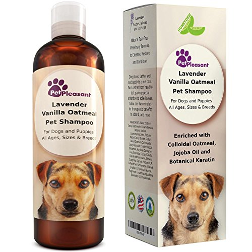 51wTEitWnlL - Vanilla Oatmeal Dog Shampoo with Lavender - Colloidal Oatmeal Dog Shampoo for Itchy Skin and Fleas - Natural Flea and Tick Prevention for Dogs - Shampoo for Dogs with Sensitive Skin - Odor Eliminator