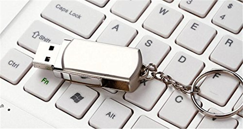 Gnc Taiwan USB-Speicherstick, 256GB, mit Drehgelenk, Edelstahl, silberfarben