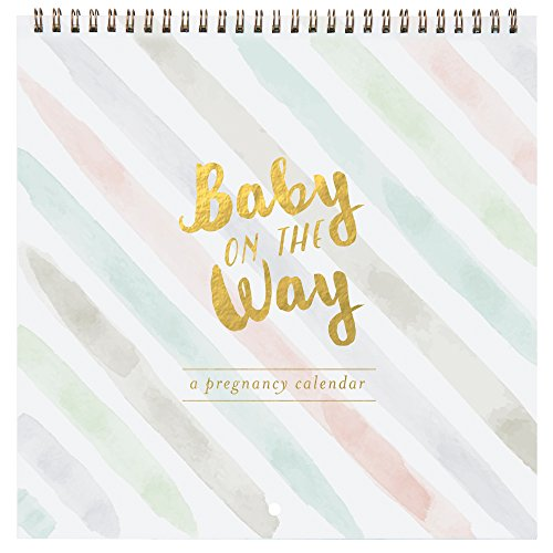 Which are the best pregnancy calendar available in 2019?