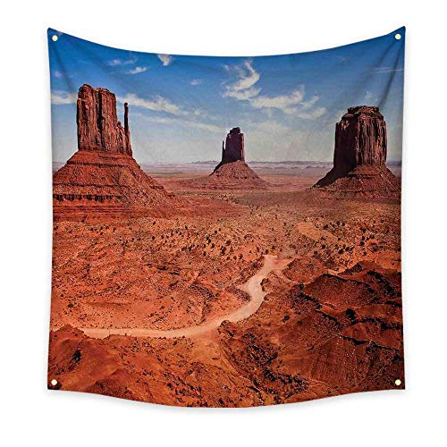 - Western Decor Simple Tapestry American Desert Arizona Canyon Monuments Valley National Park Wild West Unique Tapestry 63W x 63L Inch
