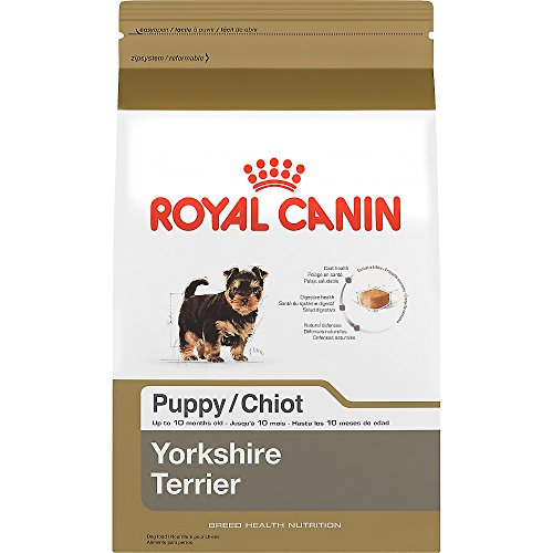 ROYAL CANIN BREED HEALTH NUTRITION Yorkshire Terrier Puppy dry dog food, 2.5-Pound