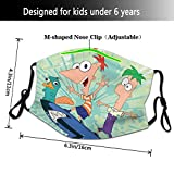 Phineas Face And Cover Ferb Face Mouth Washable