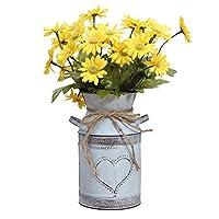 Soyizom Vaso di Metallo Shabby Chic in Stile Country Francese, Vaso di Fiori Rustico con Forma di Cuore per la…