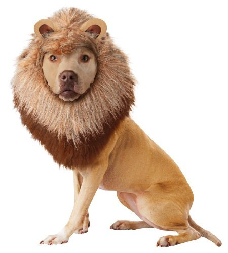 Lion Pet Pet Costume - Medium by California Costumes