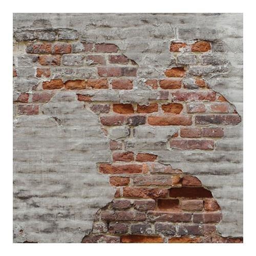 (Lastolite LL LB5713 5 x7 Feet Urban Collapsible (1.5x2.1m) Rusty Metal, Plaster Wall)