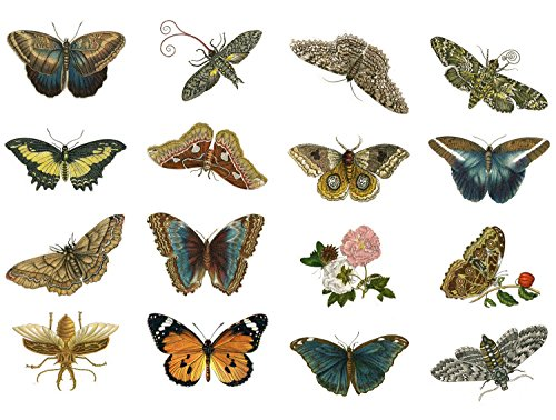 decoupage-paper-pack-10sheets-a4-8x12-butterfly-flonz-vintage-ephemera