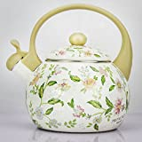 Whistling TeaKettle 2.5 Quart Tea Pot Stainless Steel Tea Kettle for Electric or Gas Stovetop - Cool Cute Modern Tea Kettle Stove Top Teapot Hot Water Whistle - Small Retro Metal Tea Kettle