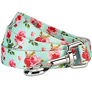 Blueberry Pet Durable Spring Scent Inspired Floral Rose Print Turquoise Dog Leash 5 ft x 3/4, Medium, Leashes for Dogs