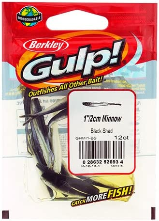 Berkley Gulp Leech 3 inch Soft Plastic Fishing Bait 12 pack Bass /& Panfish Bait