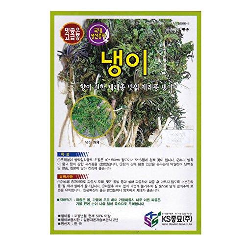 Shepherd's Purse, Capsella Bursa-pastoris seeds Korea. 1pack
