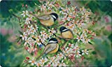 Toland Home Garden Sweet Chickadees 18 x 30 Inch Decorative Floor Mat Spring Bird Tree Flower Doormat