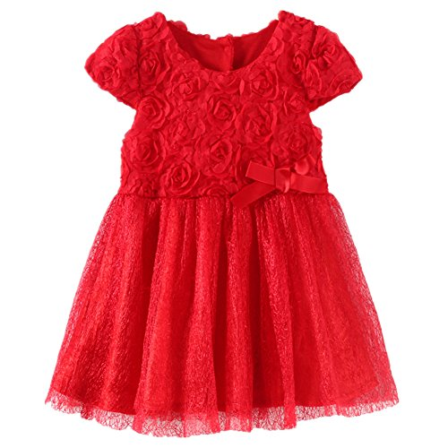 LittleSpring Baby Girls Party Dresses Flowers