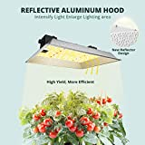 VIPARSPECTRA L600 LED Grow Light with 2'x2' Mylar